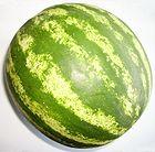 140px-wassermelone